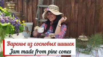 Варенье из сосновых шишек.Jam made from pine cones.Укрепление иммунитета